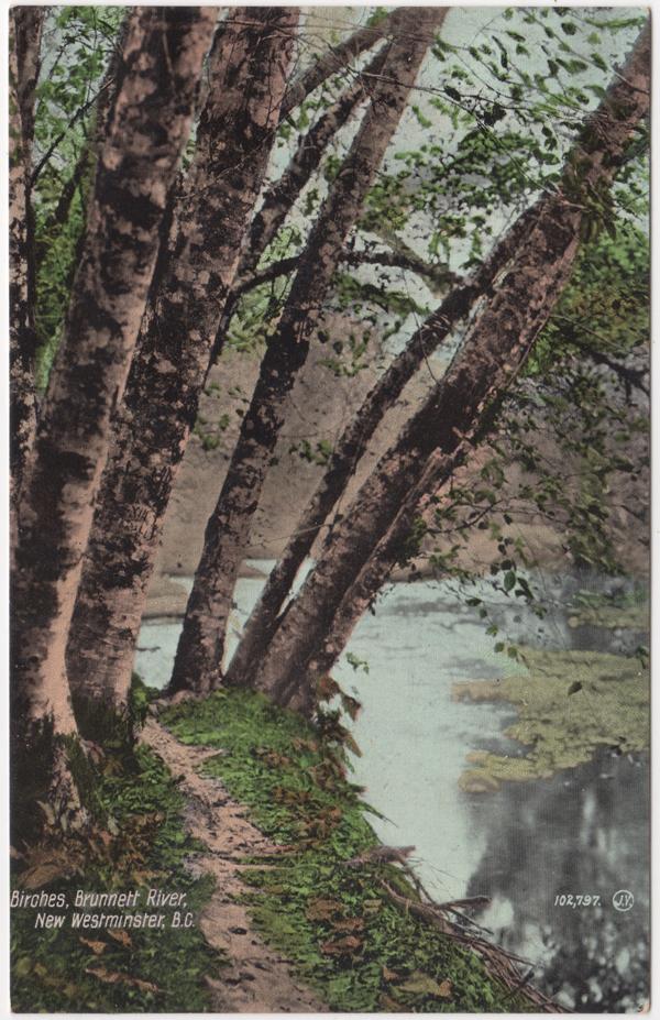Rivière Brunette, Burnaby; ca. années 1920 (SHFCB 2016.02.109)
